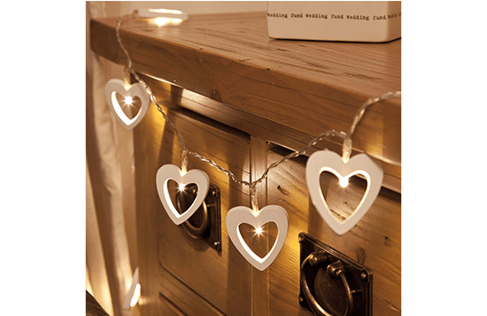 Not Just any old Xmas lights,  These are all year round Festive Lights! Brighten up the garden!